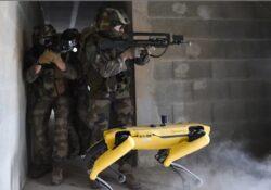 Французкий боевой робот